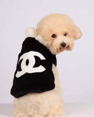 Chanel Pet Coat