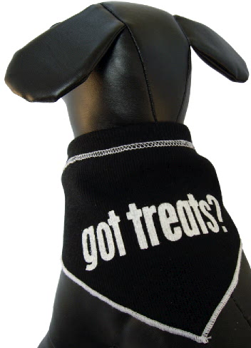 Got Treats? Scarf
