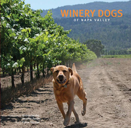 Winery Dogs of Napa Valley Book