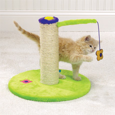 Zanies Flower Power Scratching Post