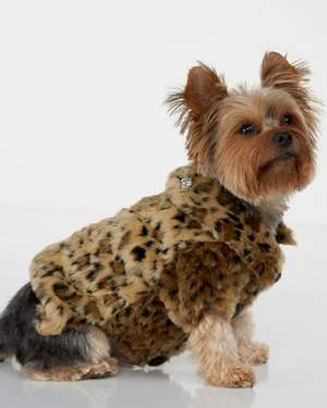 Leopard Dog Coat,Juicy Pet Clothes