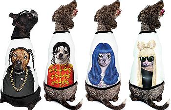 Pets Rock Starz Pet Raglan T-Shirts