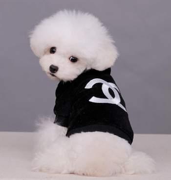 Velvet Dog Clothes,Chanel Pet Clothing