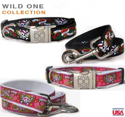 Wild One Collection